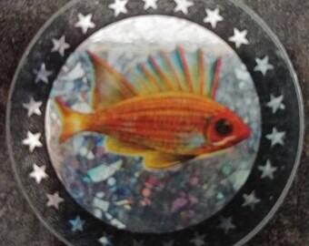 RARE heavy metal Pogs Slammer Milk Caps Slammer Pog Fish Gold Fish gold 1990's