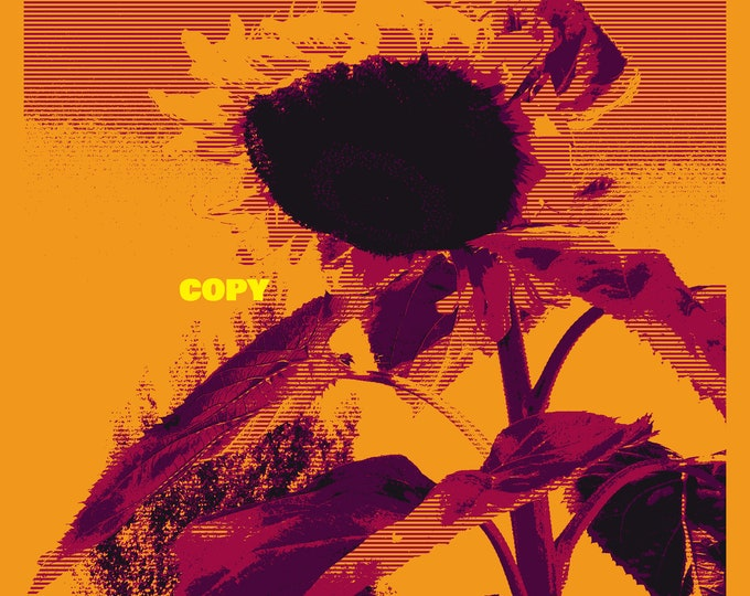 Custom Pop Art print photo card art card Sunflower! garden flower retro style pop photo RP 4x6