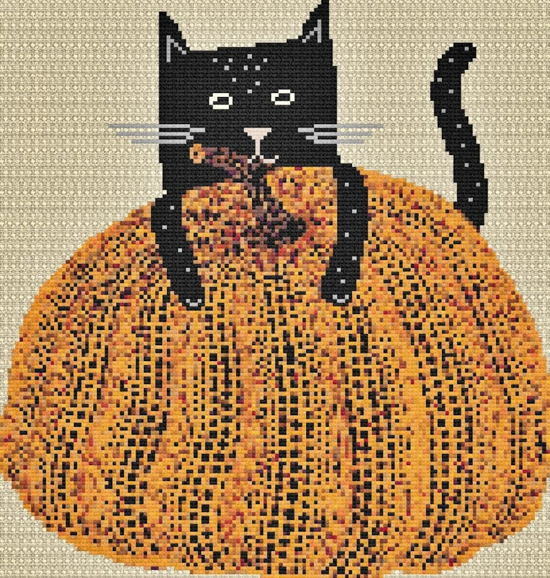 Pumpkin and Cat image 0
