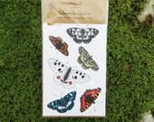 Beautiful Butterfly Stickers