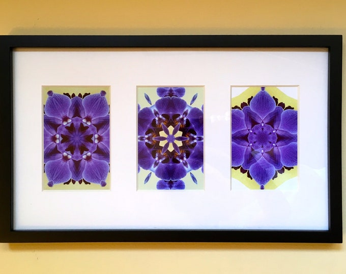 Purple Orchid Triptych, Brighten Any Room with these Vibrant Original Designs, Mount Vertically or Horizontally