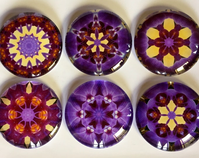 Glass Magnets, 6 Pc Set, Perfect for Kitchen, Cubicle, Message Board, Fridge Magnets Designed from Photograph of Purple Orchids