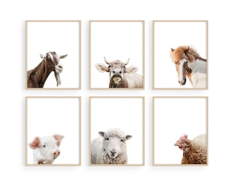 """Haus and Hues Rustic Farm Animal Pictures - Farmhouse Wall Art and Country Pictures for Kitchen Walls   8""""X10"""" UNFRAMED"""