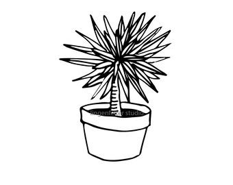 Hand drawn potted plant SVG image download (dracaena marginata)