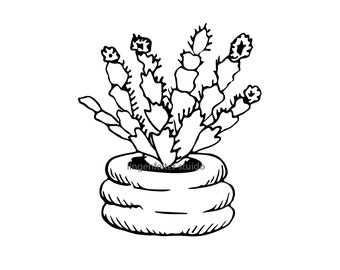 Hand drawn potted plant digital image download