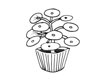 Hand drawn potted pilea peperomioides plant vector image clip art (SVG file format)