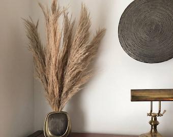 Pampas Grass - Fluffy - Natural - Dry Flower - Boho - Wedding - Home Decor