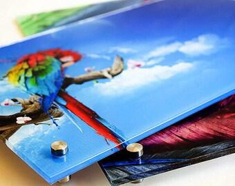 acrylic prints etsy