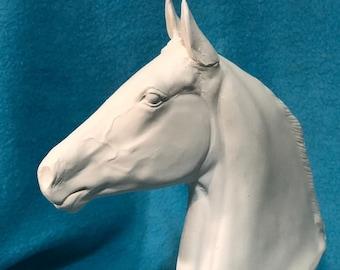 Morgan Horse Bust