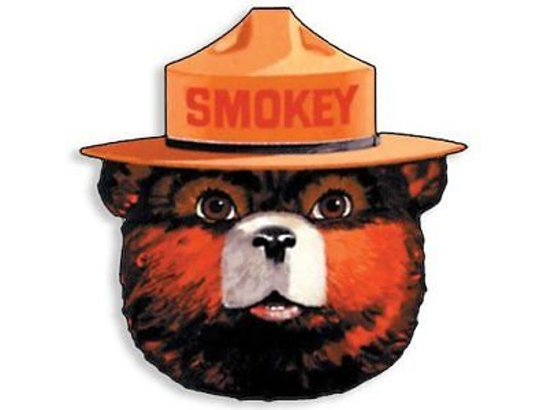 4x4 inch Full Color SMOKEY THE BEAR Face Shaped Sticker  image 0