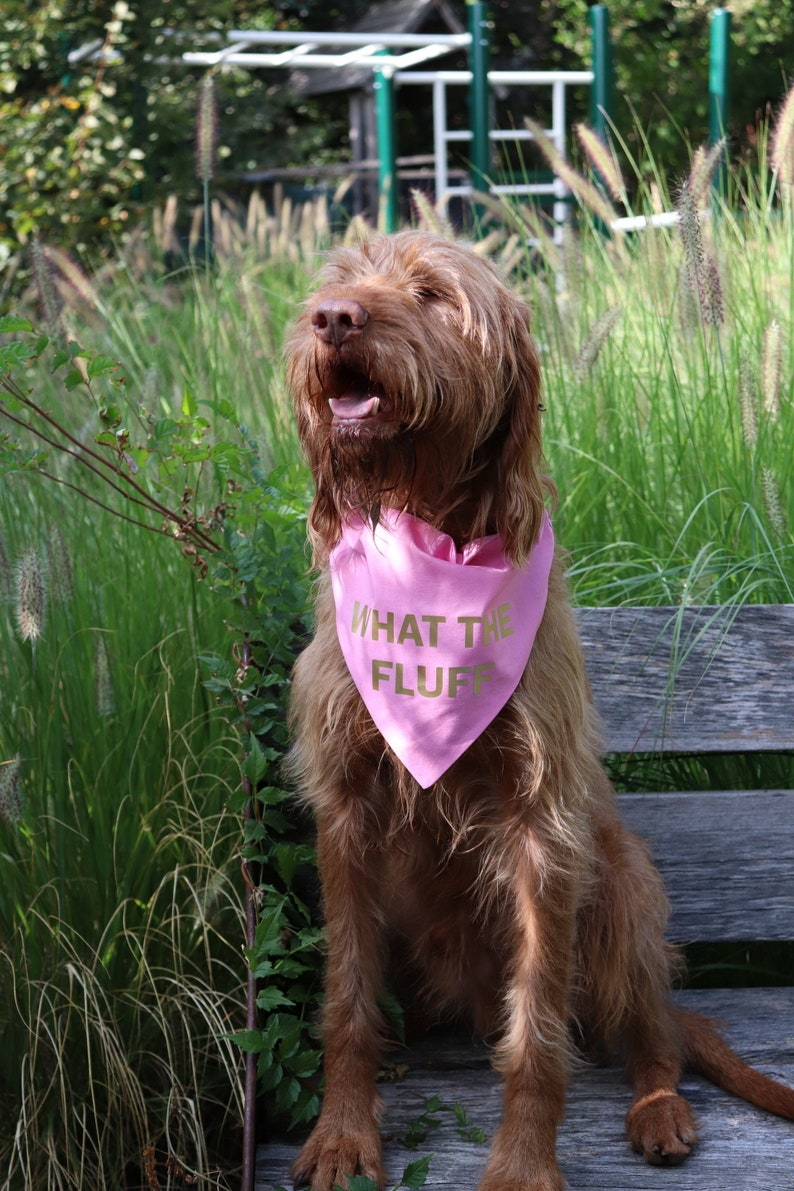 Dog gift What The Fluff over the collar dog bandana Large dog bandana Custom color dog bandana Funny pet gifts Slip on dog bandanas