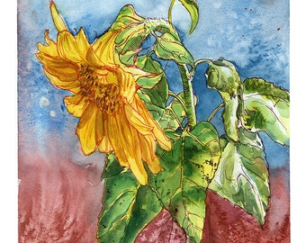 Ceramic Tile 6 square Sunflower by Basilius Besler 1561-1629