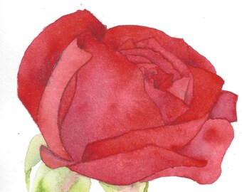 Red Rose Painting Etsy