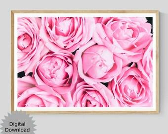Pink Rose Printable Wall Art, Flower Photography Print, Floral Instant Download, Pastel Botanical Decor