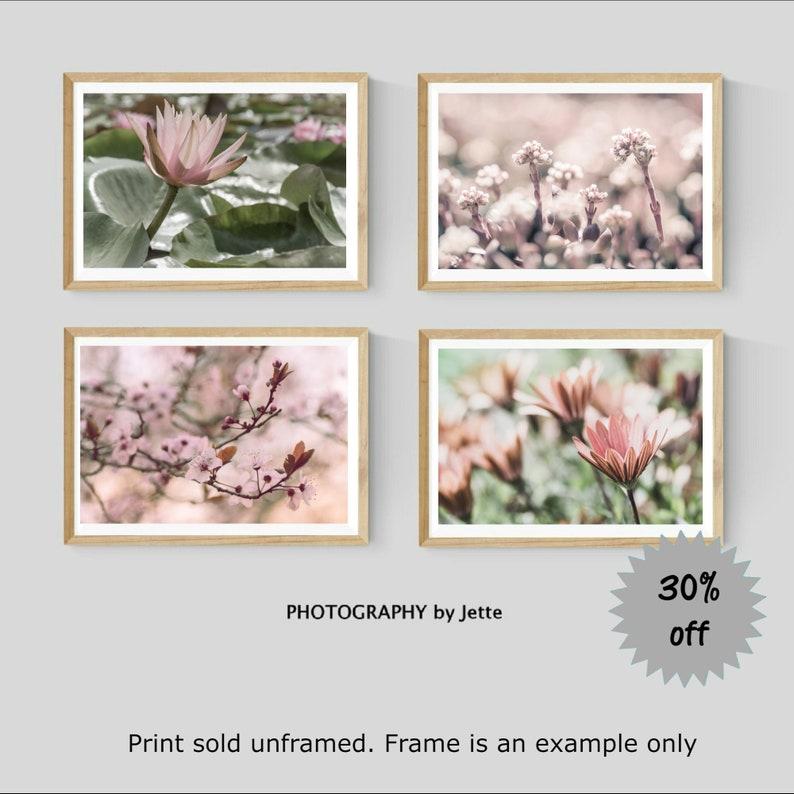 pink floral photography flower 8x10 20x30 fine art photography nature photography large pastel wall art spring summer decor mint aqua pink