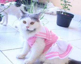 persiansphynx cat outfit cat dress unique style Dress with motive flower pinky girl dress for cat and small dog