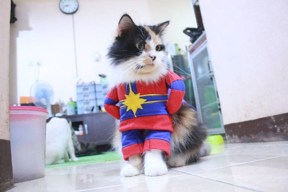 Costume Captain Marvel Final For Cat Or Small Dog Persian Etsy ✪ captain america costumes for kids, women. costume captain marvel final for cat or small dog persian cat sphynx cat outfit cat clothing for cute pet
