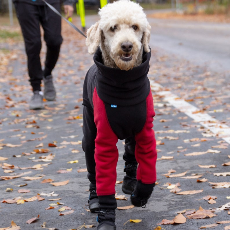 Ze Poodle Water Repellent Winter Dog Tracksuit | Stay at Home Mum