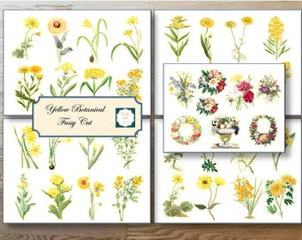 Yellow Botanical Fussy Cut for your ephemera or journal page.