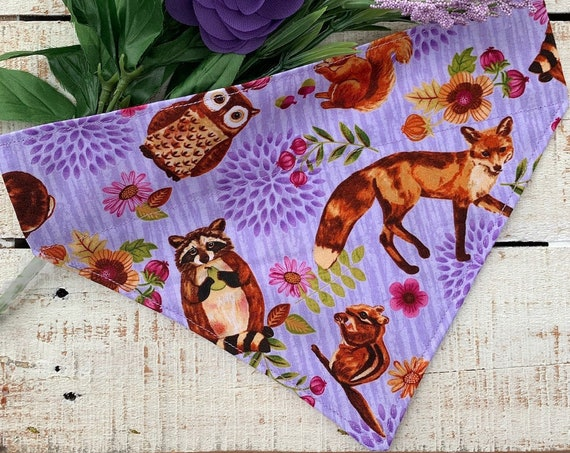 Pet Bandana Assistedly Made by Special Olympians, Collar Slides Thru, Made in Montana, Dog or Cat Gift, Ready to Ship, Ships Free!