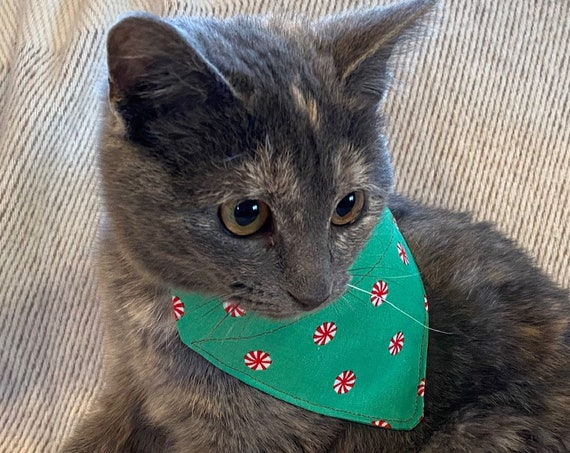 Peppermint Pet Bandana, for Dogs or Cats, Collar Slides Thru, Christmas, Stocking Stuffer, Assistedly Made by Special Olympians