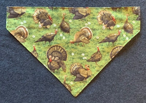 Turkey Pet Bandana, Collar Slips Thru Dog Cat Bandana, Hunting, Wildlife, Turkey Federation, Made in Montana Assistedly by Special Olympians