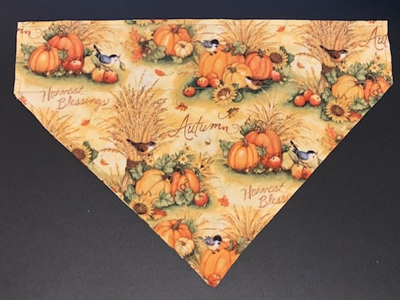 Autumn Pet Bandana for Dog Pup Cat, Pumpkin Harvest, Collar Slips Thru Bandana, Ships Free, Made in Montana Assistedly by Special Olympians