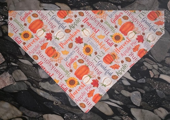 Thanksgiving Pet Bandana, Collar Fits Inside, Holiday Pet Photos for Dog or Cat, Assistedly Made by Young Adults with Special Needs