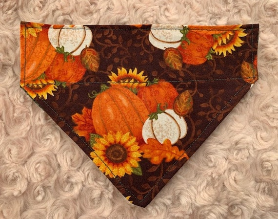 Harvest Pumpkin Pet Bandana, Sunflowers, Oak Leaves, Collar Slips Thru Dog Cat Bandana, Thanksgiving, Autumn, Fall Garden, Made in Montana