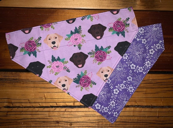 Sweet Labs Bandana, Reversible, Labrador Retriever, SIZE LARGE ONLY, Made in Montana Assistedly by Young Adults with Special Needs,