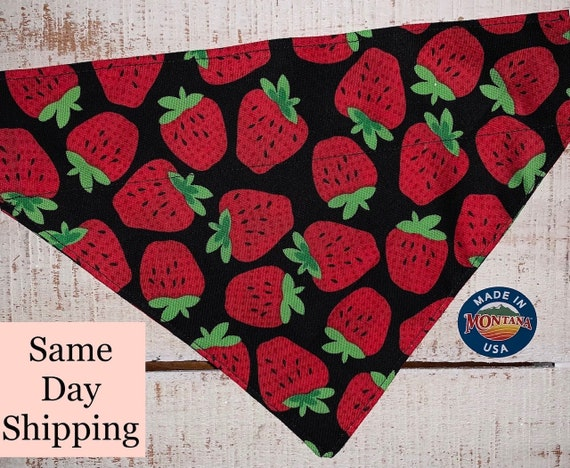 Strawberry Pet Bandana, Dog or Cat Bandana, Ferret Scarf, Guinea Pig Scarf, Rabbit Scarf, Made in Montana Assistedly by Special Olympians