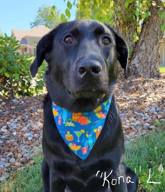 Hawaiian Dog Bandana, Reversible to Retro Woody, Tiki Cat Bandana, Tropical Pet Bandana, Luau Pet Party Favor, Goody Bag, Ready to Ship!