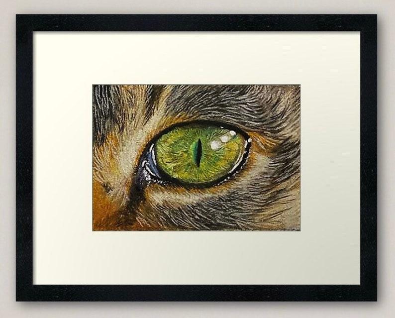 Animal Eye Pastel Studies Cat Eye