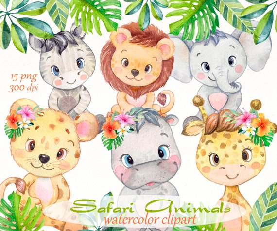 Safari Animals Clipart Watercolor Baby Jungle Elephant Etsy Giraffe illustration, northern giraffe okapi animal safari, giraffe, mammal, cat like mammal, animals png. etsy