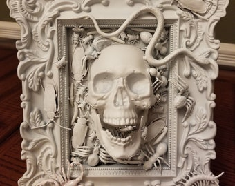 Gothic Home Decor U201cFrozen In Timeu201d Skull And Bugs