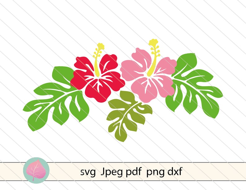 silhouette.Flower cutting file Hibiscus svg vector clipart Hybiscus svg dxf cut file Hybiscus flowers svg Tropical flower svg for cricut