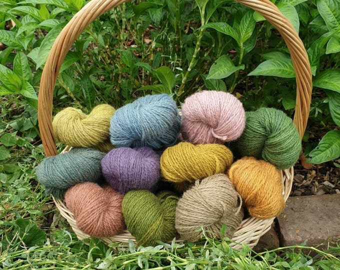 Mystery box of naturally dyed regeneratively farmed British wool