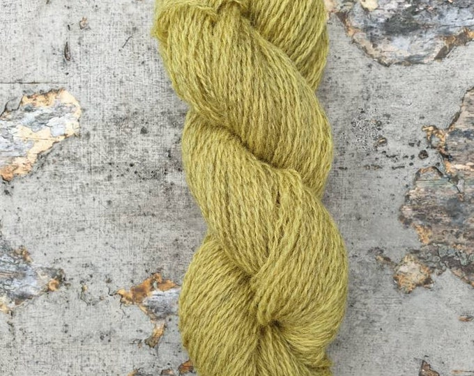 Homegrown/Foraged - Queen Anne's lace - naturally dyed regeneratively farmed British wool