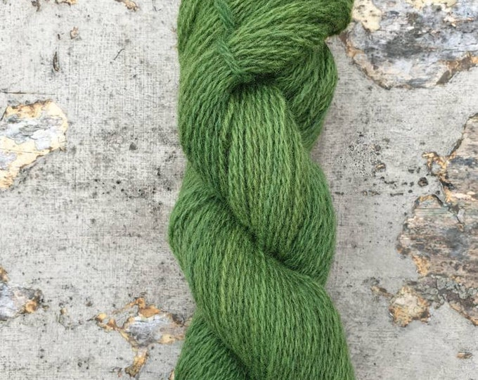 Homegrown/Foraged - indigo & Queen Anne's lace - naturally dyed regeneratively farmed British wool