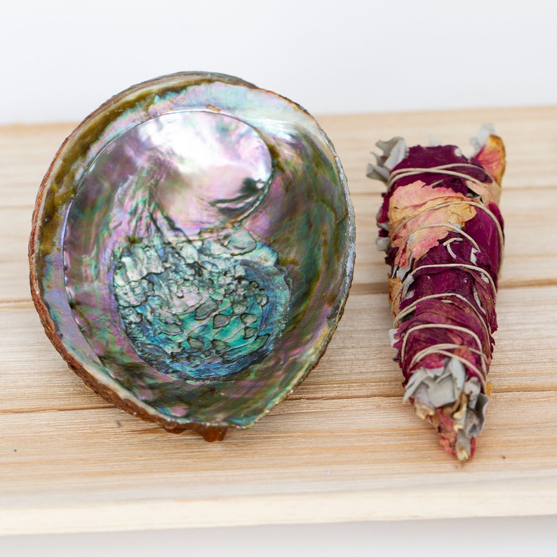 Love White Sage Smudge kit includes Abalone shell and  Rose image 0