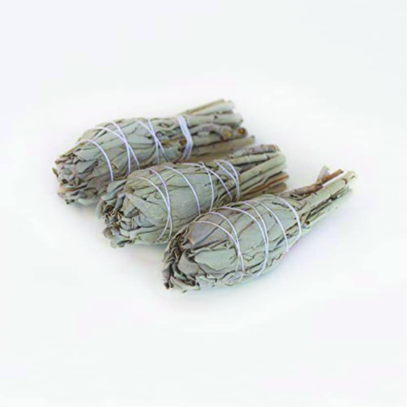 White Sage Bundle White Sage Smudge Sticks Home Cleansing image 0