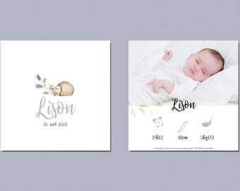 Share birth, share birth watercolor, share birth little hedgehog