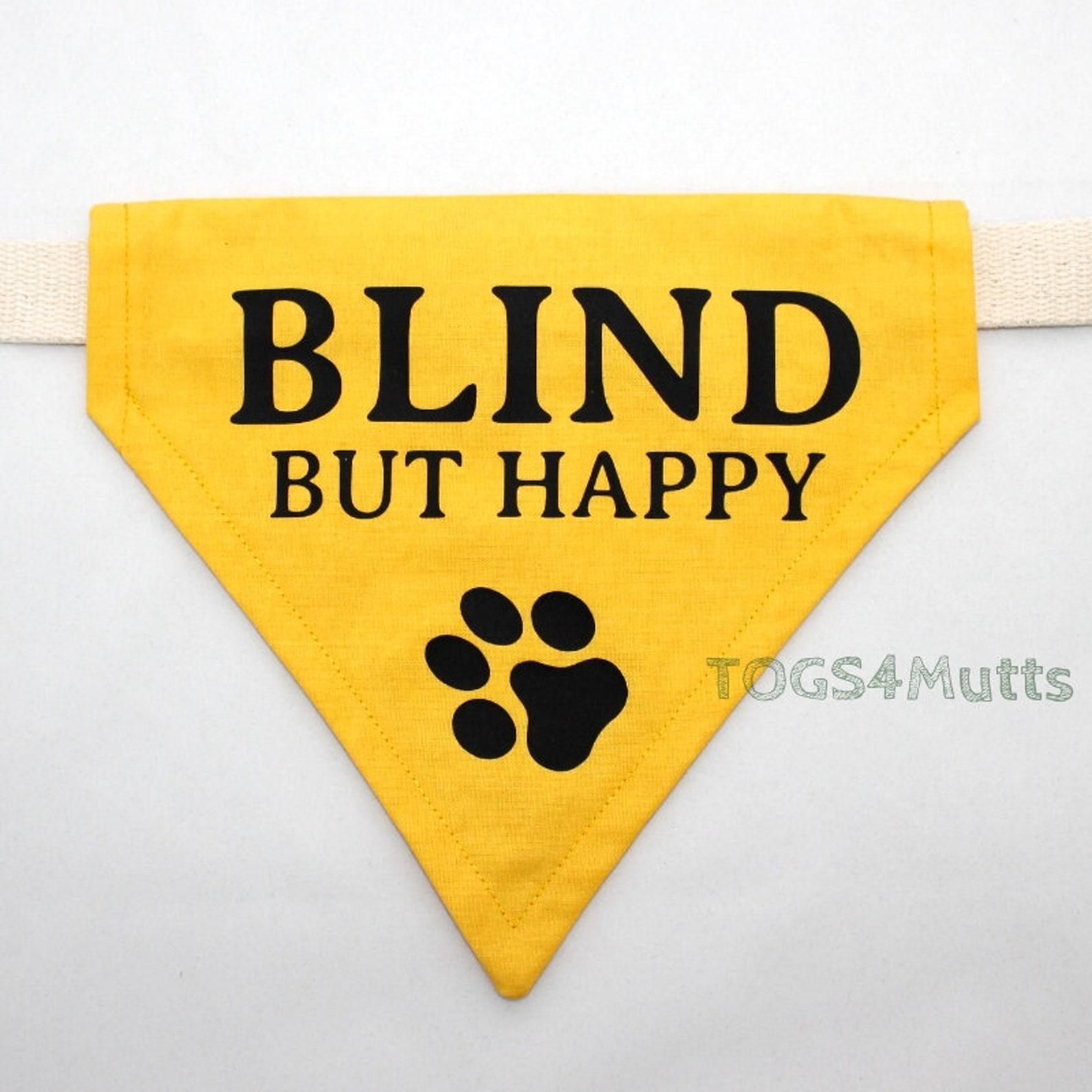 Blind but happy dog bandana
