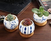 FAST SHIP Set of 3 - 2.5 Inch Porcelain Succulent with Bamboo Tray Drainage Pot Planters Ceramic Container Window Box Cactus for Home Decor