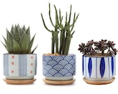 FAST SHIP Set of 3 Japanese Style Succulent Cactus Pot Planter Ceramic Container Window Box with Drainage Bamboo Tray for Home Decor