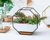 FAST SHIP Wall Mounted Black Metal Hanging Ceramic Planter With Bamboo Wood Tray Stand Tabletop Container Vase Holder Home Decor Modern