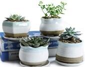FAST SHIP Set of 4 Succulent Planter Pots with Tray Drainage Hole Flower Ceramic Blue Cement Cactus Pot Concrete Container Window Planters