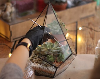 DIY terrarium kit/ gift set / Christmas gift/ new home gift/ glass container/ Gift Idea/ Living room decor/ Geometric planter
