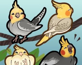 NEW! Cockatiel Stickers