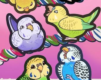 NEW! Budgie Stickers
